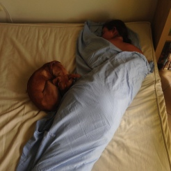 Nap avec mama